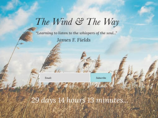 The Wind & The Way